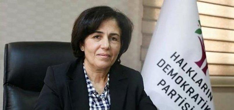 ÖLEN TERÖRİSTLERE 'ŞEHİT' DİYEN, HDP'Lİ BAŞKANA ŞOK