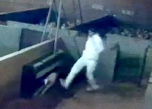 Yürek yakan görüntüler ülkeyi karıştırdı! Mezbahada kuzulara işkence kamerada