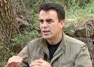 Selahattin Demirtaş'ın kardeşi Nurettin Demirtaş hakkında PKK gerçeği