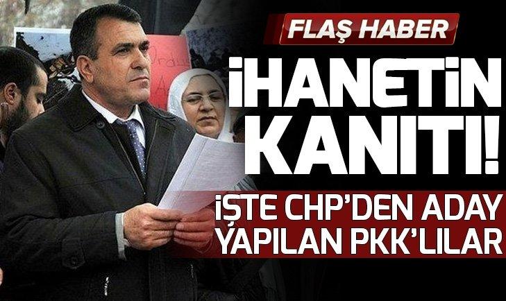 TERÖRİST BAŞI ÖCALAN'A ÖZGÜRLÜK İSTEYEN CHP ADAYI!