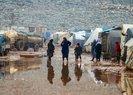 İdlib'deki saldırılar nedeniyle 31 bin sivil Türkiye sınırı yakınlarına göç etti