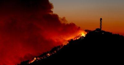 İzmir'de gergin anlar! Orman yangını iki mahalleyi tehdit ediyor