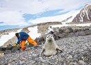 Antarktika'da Türk üssünün bulunduğu adanın adı nedir? 2019 KPSS Antarktika sorusu yanıtı!