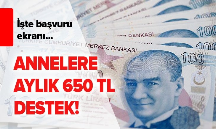 ANNELERE 650 TL KREŞ DESTEĞİ BAŞVURU EKRANI!