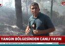 Muğla Marmaris'te orman yangını   Video
