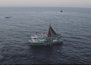 Yasa dışı avcılıkta yeni dönem! 1549 kişiye 6 milyon 550 bin para cezası kesildi