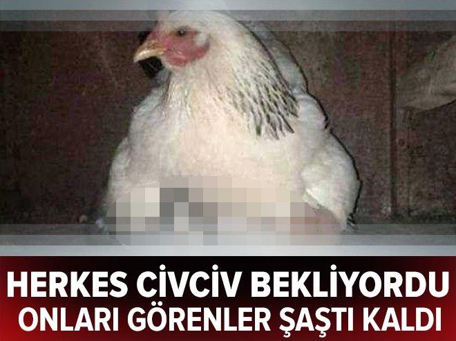GÖRENLERİ ŞAŞIRTAN KARE!