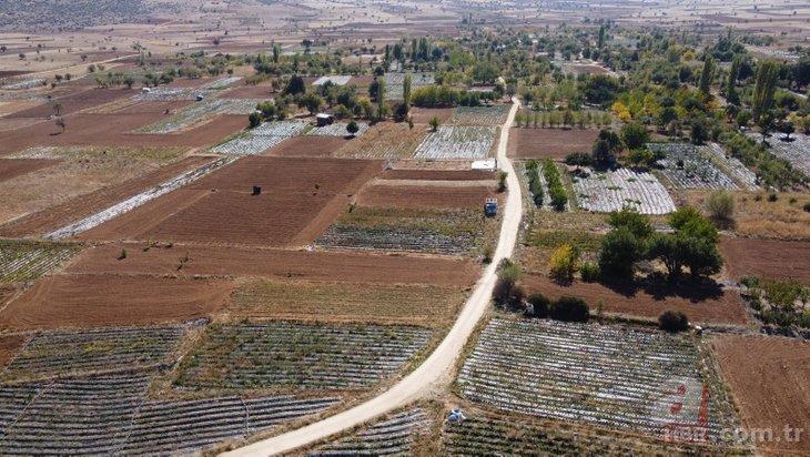 Konya'daki Çamlıca Mahallesi'nin kaderi değişti! Bir dönüm 15 bin lira kazandırıyor