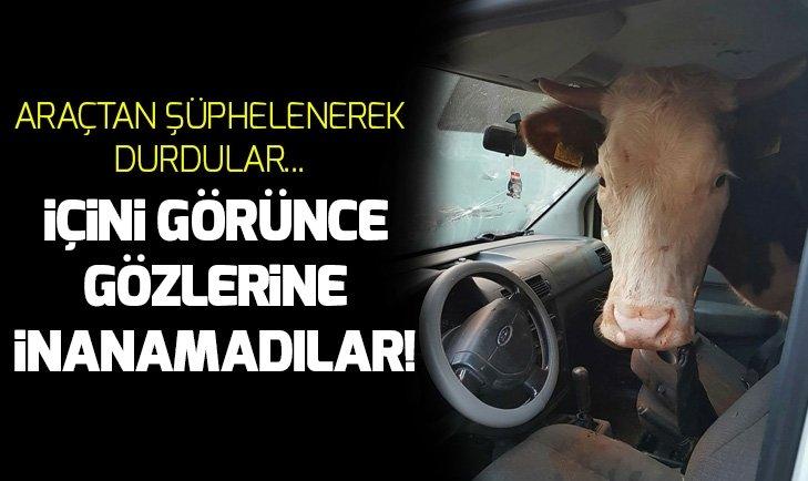 POLİSLER ŞAŞIRTAN OLAY! DURDUKLARI ARAÇTA...