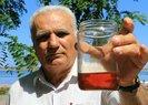 Samsunlu mühendis, organik tarım ilacı üretti