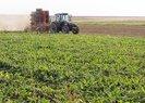 Son dakika: Hazine arazileri tarıma açılıyor