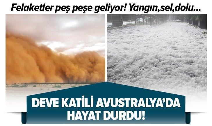 DEVE KATİLİ AVUSTRALYA'DA HAYAT DURMA NOKTASINA GELDİ!