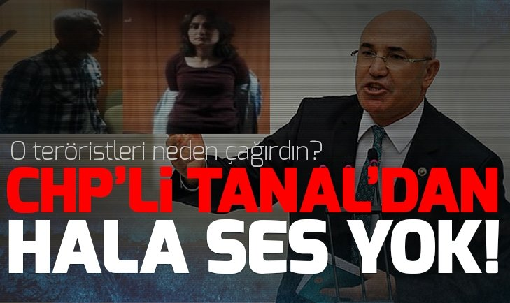 DHPK-C'li teröristleri Meclis'e çağıran CHP'li Tanal'dan ses yok!