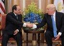 Trump ülkesinde protesto edilen darbeci Sisi'yi böyle savundu!