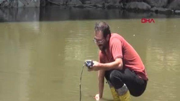Karasu Nehri'nde korkutan balık ölümleri