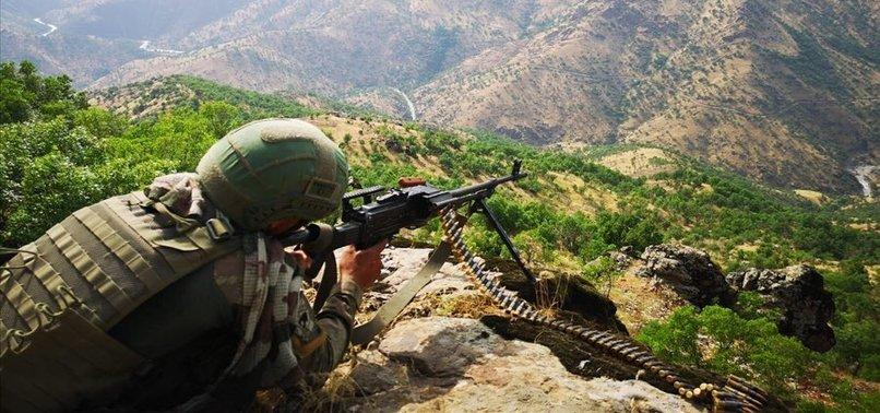 PENÇE HAREKATI'NDA 61 PKK'LI TERÖRİST ÖLDÜRÜLDÜ