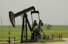 TPAO'dan petrol aramak için 3 ayrı ruhsat başvurusu