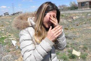 Ankara'da yine katliam! 7 köpek zehirlenmiş halde bulundu