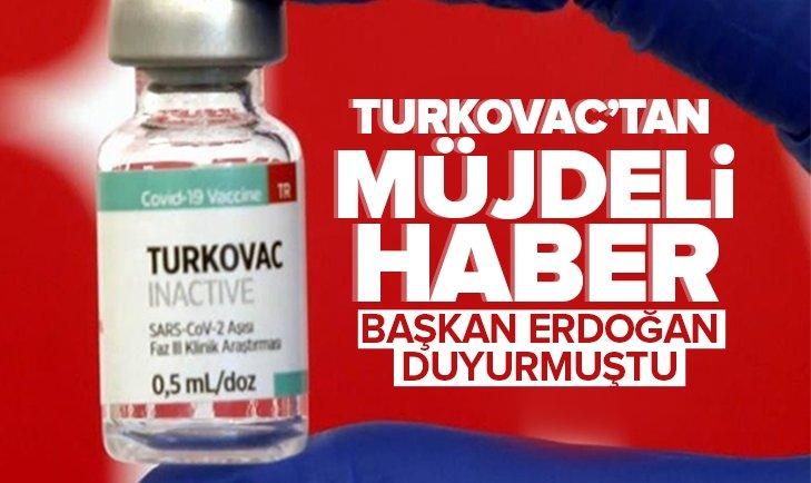 Yerli aşı Turkovac'tan müjdeli haber! Başkan Erdoğan duyurmuştu