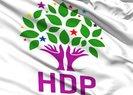HDP ve DP'li belediyelerde işçi kıyımı: 52 kişi işten çıkarıldı