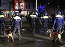 HOLLANDA POLİSİNİN KÖPEKLİ SALDIRISINDA KAÇ KİŞİ YARALANDI?
