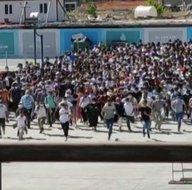 İstanbulda hayrete düşüren görüntü! Vapura hücum ettiler
