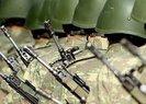 Yeni askerlik sistemi son durum! Yeni askerlik sistemi ne zaman yürürlüğe girecek?