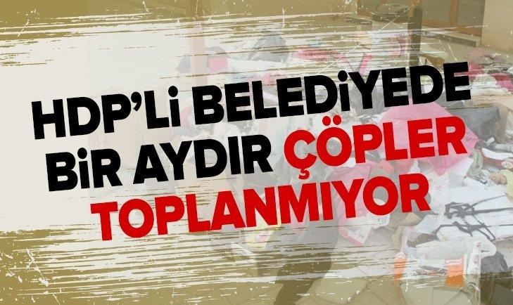 HDP'Lİ NUSAYBİN BELEDİYESİNDE ÇÖP İSYANI