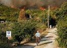 İzmir Urla'daki orman yangını Yukarı Orhanlı Köyü'ne sıçradı! Köy tedbir amaçlı boşaltıldı