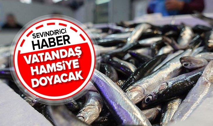 VATANDAŞ HAMSİYE DOYACAK!