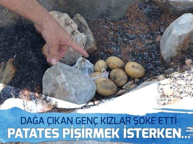 Patates pişirmek isterken dağı yaktılar