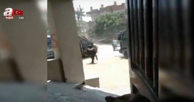 Darbeci Sisi, Mursi'nin doğduğu köyü abluka altına aldı! | Video