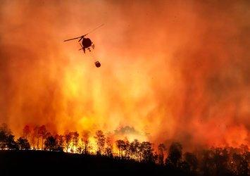 Türkiye genelinde süren orman yangınlarına ilişkin yeni açıklama   Tarım ve Orman Bakanı Pakdemirli duyurdu