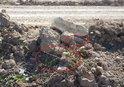 SAVUNMA BAKANLIĞI: PKK-YPG'NİN RASULAYN'DA TUZAKLADIĞI 20 KİLOGRAMLIK EYP İMHA EDİLDİ