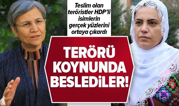 HDP'li isimler terörü koynunda beslediler!