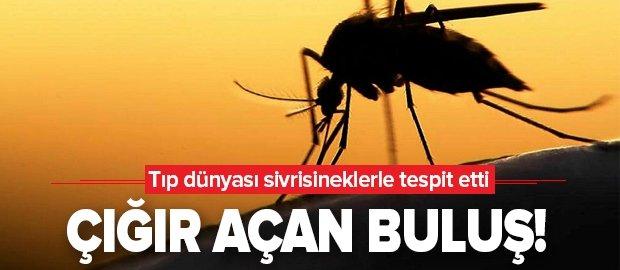 Son dakika: Tıp dünyasından çığır açan buluş! Sivrisineklerle kanser tespiti yapılacak