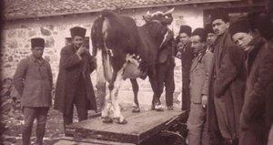 Osmanlı'da Kurban Bayramı nasıldı?