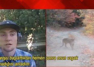 Son dakika: Pumanın saldırısına uğrayan genç dünyanın konuştuğu videoyu A Haber'e anlattı! Milyonlarca izleme alan o videoyu nasıl çekti? İşte o görüntülerin perde arkası