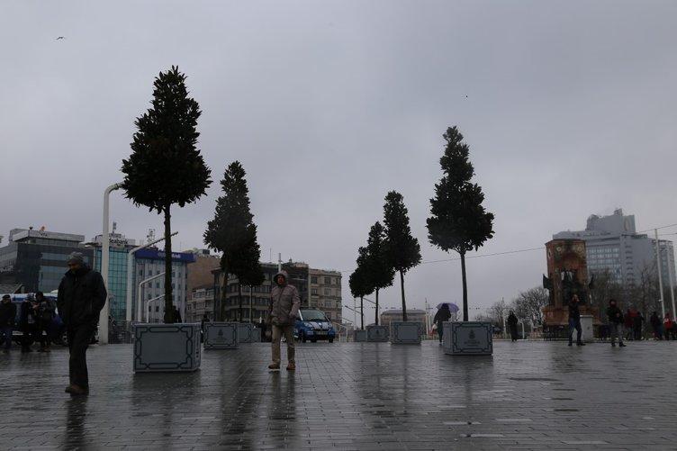 TAKSİM'DEKİ MANOLYA AĞAÇLARI BEĞENİLDİ