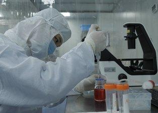 Çin, koronavirüs aşısını bulduğunu ilan etti: Yüzde 99 etkili olacak