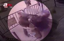 Kahraman polis 3.kattan düşen çocuğu böyle tuttu