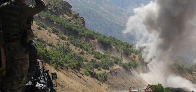 SALDIRI DÜZENLEYEN PKK'LI PARÇALARA AYRILDI