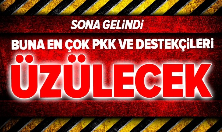 Türkiyenin yeni kamikazesi Alpagu geliyor! İşte Türkiyenin silahları...