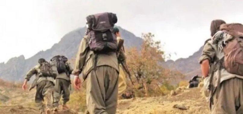 KIRMIZI BÜLTENLE ARANAN PKK'LI TERÖRİST YAKALANDI