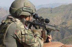 Bitlis'te iki terörist etkisiz hale getirildi