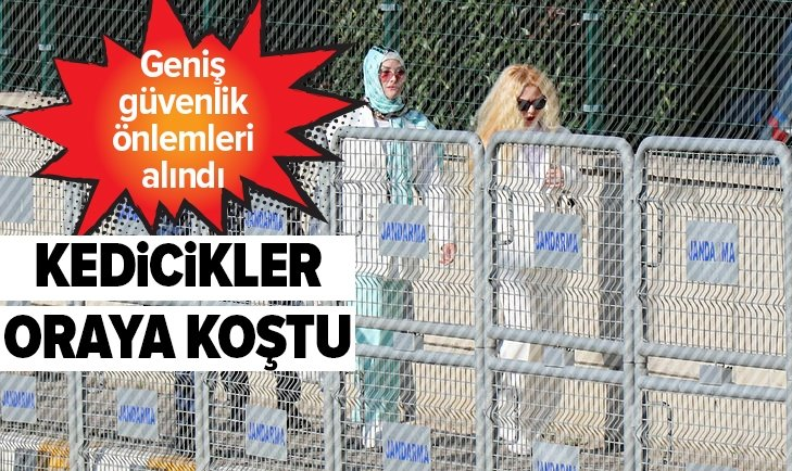 ADNAN OKTAR'A 'KEDİCİK'LERDEN DESTEK