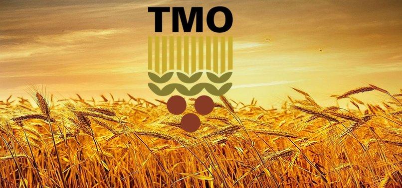 TMO personel alımı başvurusu nasıl yapılır? TMO 231 personel alımı başvuru şartları nelerdir?