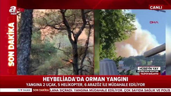 Heybeliada'daki yangının sebebi belli oldu?