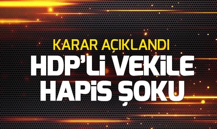 HDP GAZİANTEP MİLLETVEKİLİ MAHMUT TOĞRUL'A 2 YIL 6 AY HAPİS CEZASI