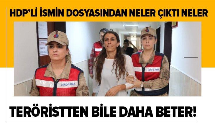 HDP'li isim teröristten bile daha beter çıktı! Sicili kabarık
